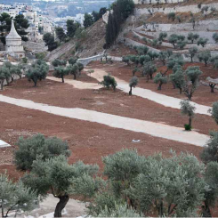 Kedrono slėnis